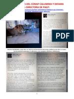 Funcionaria Del Conap Difama y Calumnia a Directora de PAGT. 19 Febrero 2013.