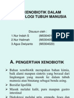 Power Point Xenobiotik