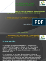 Presentacion Merly ESTRATEGIA