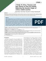 Chemotaxonomic Study of Citrus, Poncirus and Fortunella Genotypes Volatiles