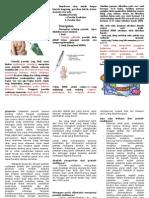 Leaflet Grande Multipara