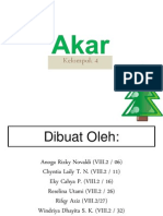 akar-120527045657-phpapp02
