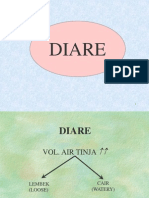 03. DIARE