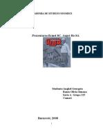 Proiect Administrarea Afacerilor - Prezentarea firmei SC. Angst-Ro SA