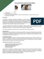 Aterosclerosis Calcificafa de La Media de Monckebergs
