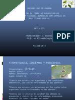 Clase-1-MPV-2013