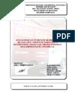 Aplicacion Tecnicas Ingenierioa Metodos Fletes Guayana CA