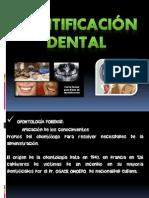 Identificacion Dental y Policial Bernardo