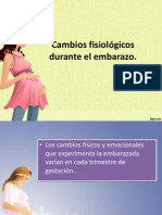 Cambios fisiológicos durante el embarazo