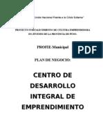 Plan de Negocios CDIEC - Puno