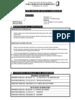 Formato Del Plan Anual_2013-14 Decimo