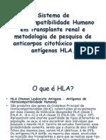 Palestra HLA