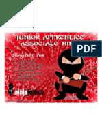 Junior Apprentice Associate Ninja certificate