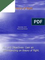 aircraft flight mini session