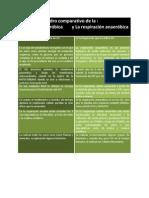 Cuadro Comparativo de La Respiracion Aerobia y Anaerobia