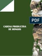 Cadena Productiva de Hongos