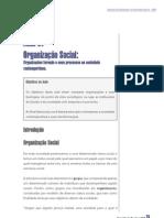 Organização Social_aula07