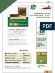 [LIVRO] Paisagismo - Manual de Jardinagem - Parte 2