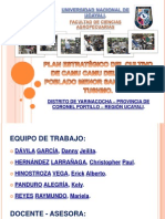 PLAN ESTRATÉGICO DE LOS PRODUCTORES DE CAMU CAMU - VALIDACIÓN