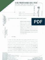 Accion de Inconstitucionalidad contra la Ley Nº 29944, Ley de Reforma Magisterial, presentado por el CPPe.
