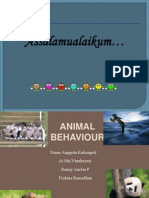 3. Animal Behaviour Ekologi