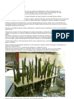 Filtro Biológico - Peixes