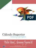 Cálculo Superior Teoría y Ejemplos