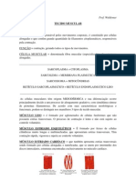 Tecido Muscular_8.pdf