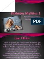 Diabetes Mellitus 1 Ok (1)