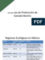 Sistemas de Producción de Ganado Bovino