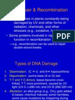 Lec12_DNA Repair.ppt