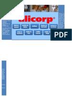 Analisis Fundamental Alicorp Saa