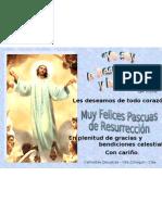 Pascual 2009