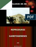 Biologi Reproduksi Dr.gunadi 2
