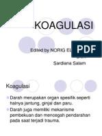KOAGULASI-2.ppt
