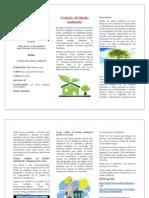 Trifoliar Medio Ambiente