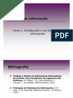 [SI-2010-11]Tema1_SI