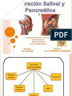 Secreción Salival y Pancreática