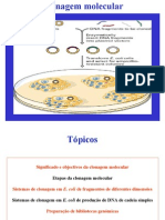 Clonagem Molecular