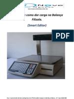 Manuais Textos-Manual de Carga Filizola