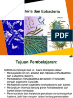 6. Media Pembelajaran Bab 3 Archaebacteria Dan Eubacteria