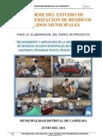 Informe Del Estudio de Caracterizacion - Caspizapa