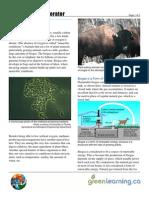 biogas-generator-cp.pdf