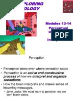 13-14PerceptualOrganizationandInterpretation