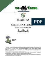 Aukanaw - La Ciencia Mapuche Plantas Medicinales