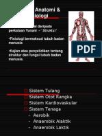 Anatomi - Sistem Rangka