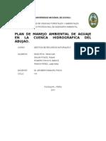 8. Pm Del Aguaje