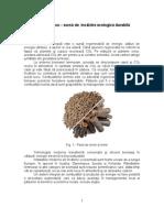 Biomasa – sursă de  încălzire ecologică durabilă