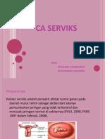 CA. Serviks