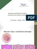 1 Estrutura e Funcao Das Proteinas Contrateis